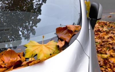 Preparación del coche para este (extraño) otoño.